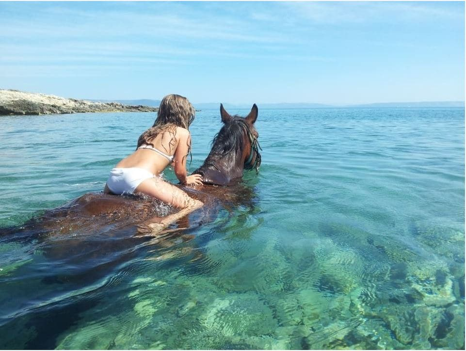 Horseback riding in Medulin